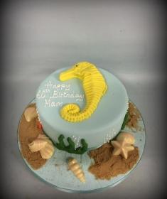 Birthday cake IMG_6483 (Copy)