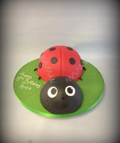Birthday cake IMG_6769 (Copy)