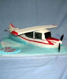 lg_Aeroplane Cake (Copy)